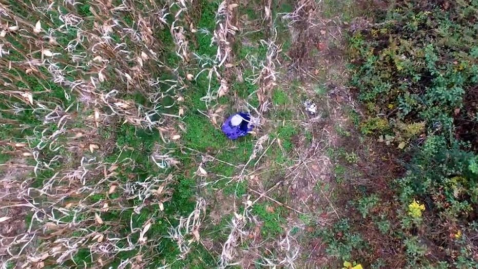 Cops use drone to find missing 81-year-old lost in cornfield