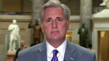 House Majority Leader speaks out on 'The Daily Briefing.'
