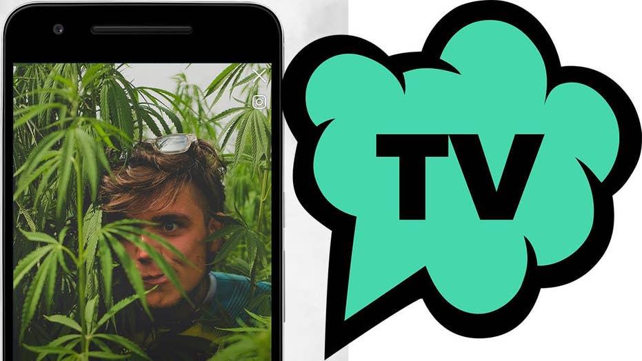 How TokeTV is banking on legalizing marijuana