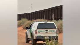 "Illegal immigrants appeared to have ""ambushed"" two U.S. Border Patrol agents near the Texas border with Mexico and bashed their heads with blunt objects -- possibly rocks -- killing one agent and sending another to a hospital in serious condition Sunday, a National Border Patrol Council official told Fox News."