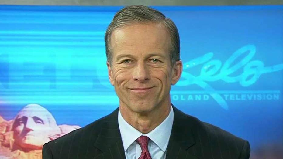 Thune on whether GOP can deliver tax reform by Christmas