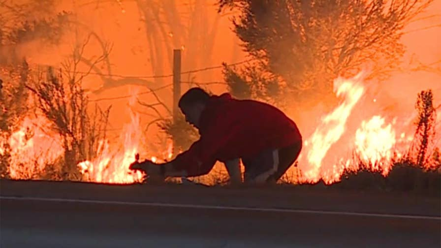 Raw video: Good Samaritan stops to save wild animal as huge wildfire burns along Highway 1 in California.