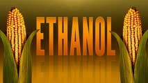 You might have voted to drain the swamp in 2016, but as far as the ethanol lobby is concerned, it's still business as usual.