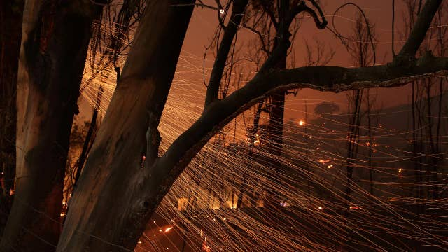 California's Thomas wildfire grows to 230,000 acres