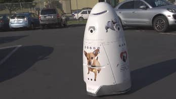 The 5-foot tall, 300-lb robot called K9 uses cameras, laser 3D mapping, GPS, microphones and license plate recognition software.