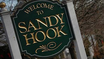 On December 14, 2012 Adam Lanza opened fire inside Sandy Hook Elementary School in Newtown, Connecticut killing 20 young children and six educators before turning the gun on himself.