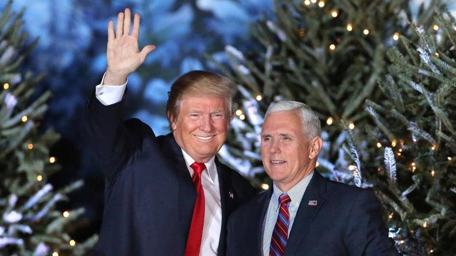 President Trump marks first Christmas in office