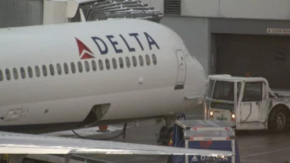 Delta flight delayed after bird flies into cockpit