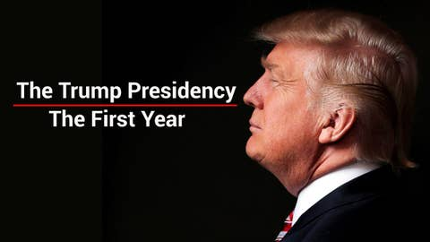 President Trump's first year in office: A look back