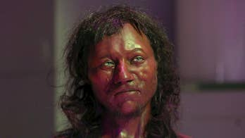 "DNA research out of University College London and the Natural History Museum that reveals 'Cheddar Man,' a Mesolithic skeleton found in Gough's Cave in 1903, had blue eyes, dark curly hair, and ""dark to black"" skin."