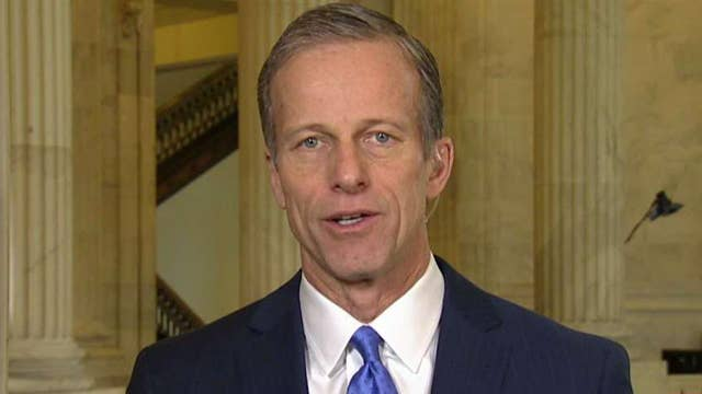 Thune: Dems on House Intel Committee acting in partisan way