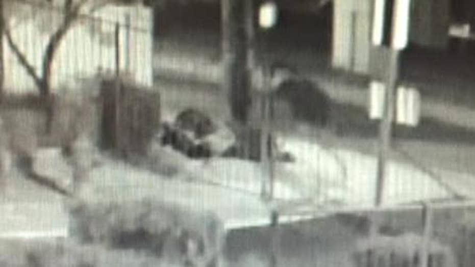 Warning graphic content: Police searching for serial shooter
