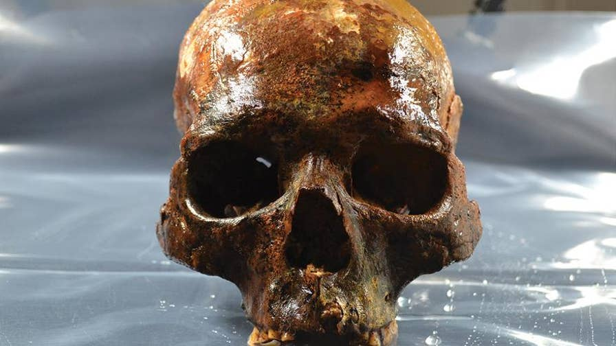Archaeologists unearth 8,000-year-old skulls. Two of which, had wooden spikes lodged through the base suggesting they were put on display.