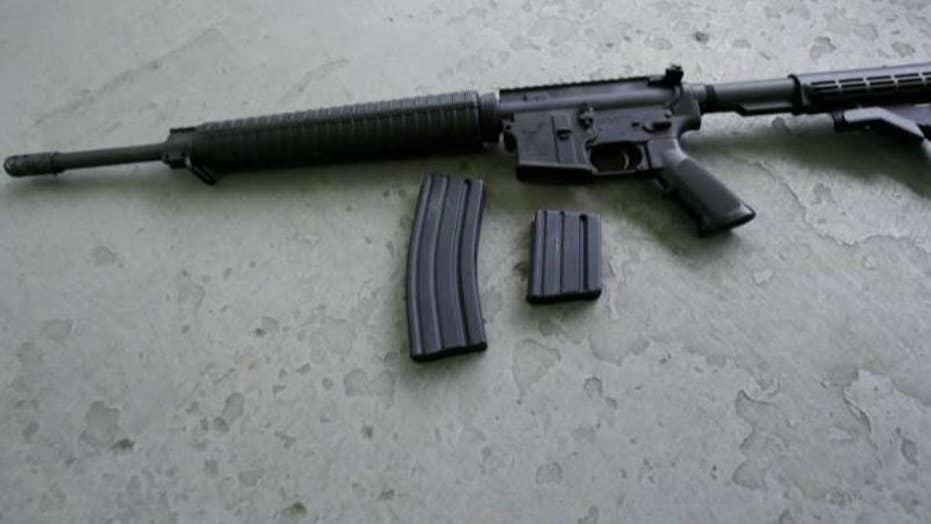 AR-15 at center of gun control debate after school shooting