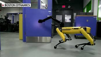 Boston Dynamics released footage of robots join forces; 'The Greg Gutfeld' panel reacts.