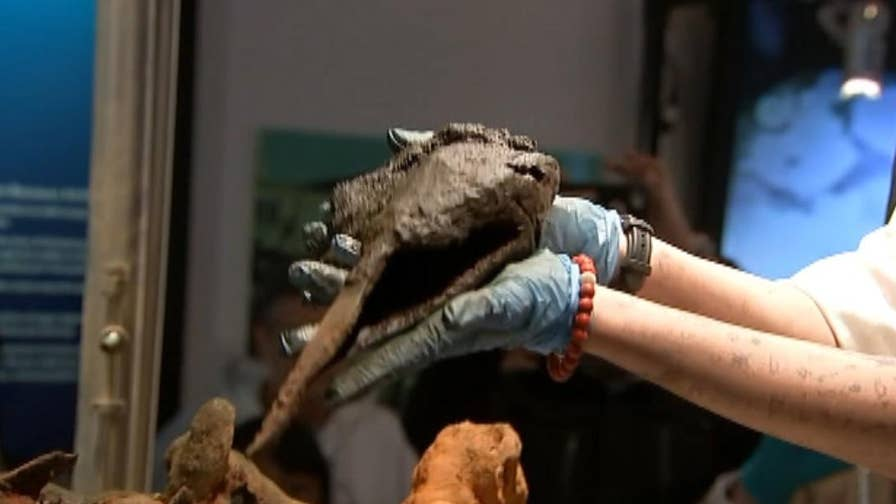 "The femur of Captain ""Black Sam"" Bellamy, the world's richest pirate, may have been found in a large concretion aboard his sunken ship, the Whydah Gally. Researchers are conducting DNA tests to see if it really is the remains of the famed pirate."