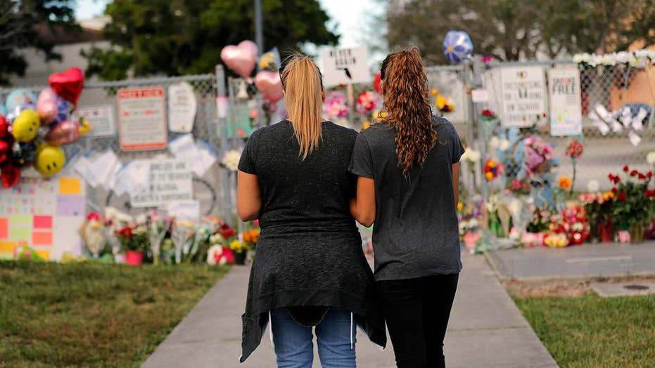 Parkland high school students protest gun violence