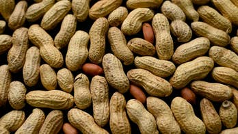 Potential life-saving peanut allergy drug on horizon, scientists say