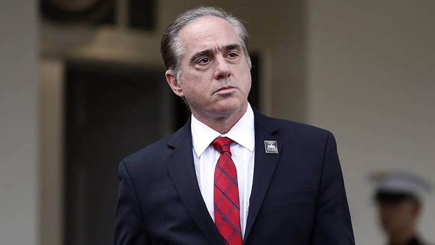 VA Secretary David Shulkin has been under fire despite early successes at Veterans Affairs; AMVETS executive director shares his group's perspective.