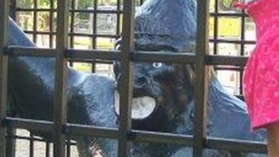Gorilla statue was removed from Corsicana, Texas park due to complaints it was racially insensitive.