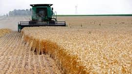 Agriculture Secretary Perdue: Despite coronavirus, America's food supply is safe, secure and abundant