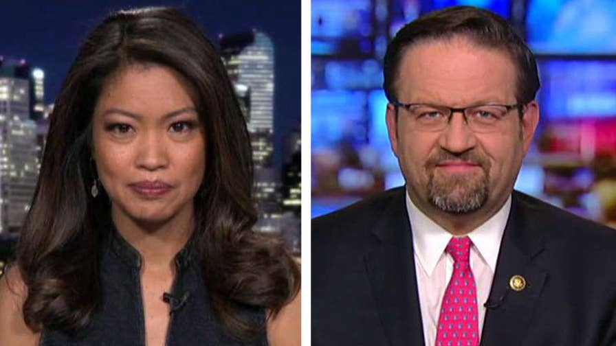 California officials face backlash for not complying with federal immigration laws, including the Oakland mayor who shared a warning about ICE raids; Michelle Malkin and Sebastian Gorka speak out on 'Hannity.'
