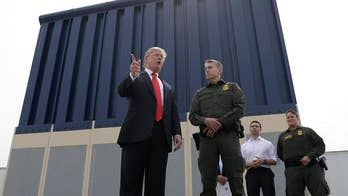 President Trump says construction of a border wall with Mexico will save hundreds of millions of dollars and increase the nation's security, criticizes sanctuary city policies.
