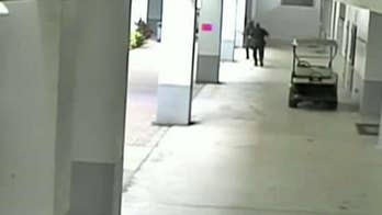 Broward County sheriff says the video of Deputy Scot Peterson responding to the school shooting at Marjory Stoneman Douglas High School 'speaks for itself'; Phil Keating reports.