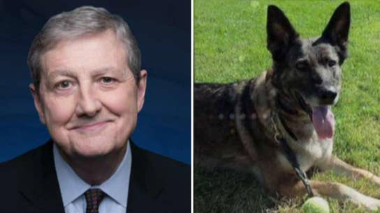 Sen. John Kennedy on push to protect pets on flights