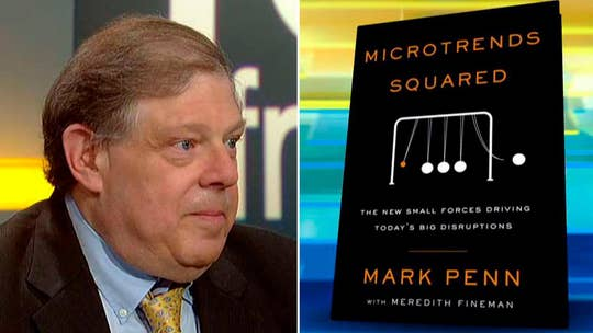Author Mark Penn talks about targeting voters through technology.