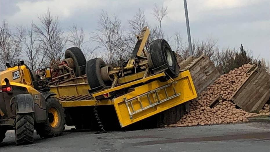 Potato truck topples in traffic circle