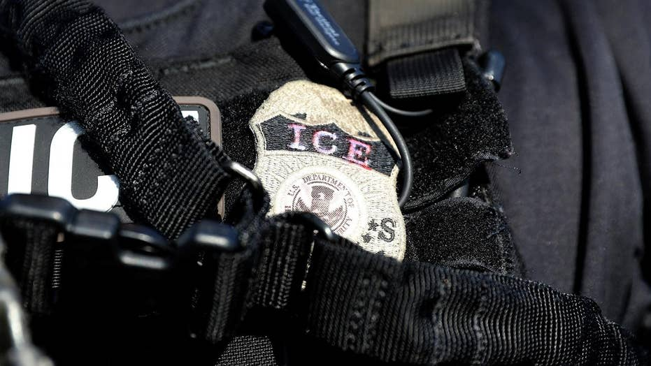 After dodging ICE raid, immigrants arrested for new crimes