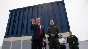 Trump faces pressure from his base to build a border wall as he decides to replace VA Secretary David Shulkin; columnist Charlie Hurt and Democratic strategist Adrienne Elrod weigh in on 'The Story.'