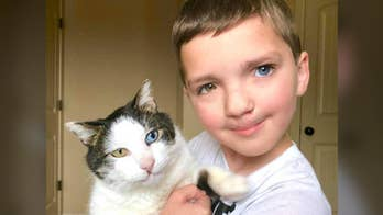 7-year-old Madden was born with a cleft and complete heterochromia iridum, a rare condition where the iris of one eye is a different color than the iris of the other eye. Madden's mother found a rescue cat with the same two conditions and embarked on a road trip from Oklahoma to Minnesota to adopt the sweet kitty and bring him home.