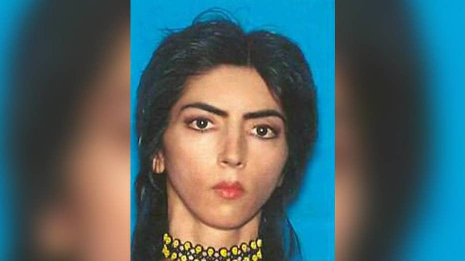 YouTube shooting: Who is Nasim Aghdam?