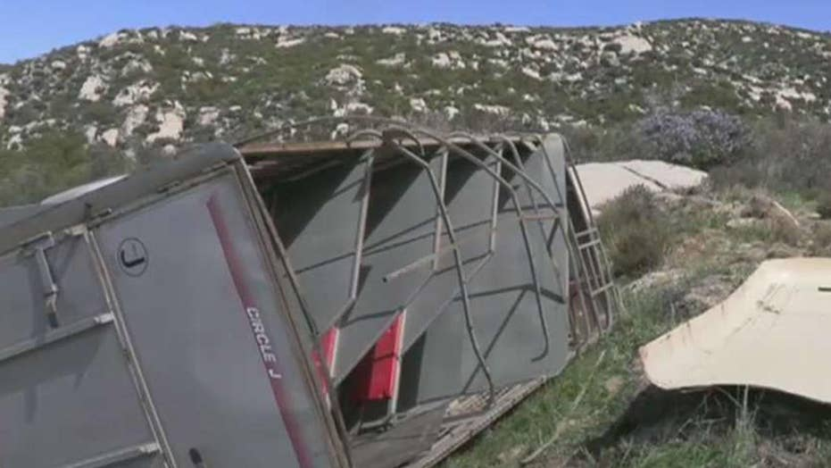 Horse trailer suspected of smuggling immigrants crashes