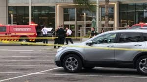 At least 11 mallgoers were injured as they fled a shopping center in Orlando after thieves set off firecrackers to create a diversion.