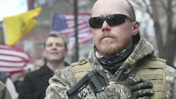 Protesters have gathered in more than a dozen states to defend the Second Amendment.