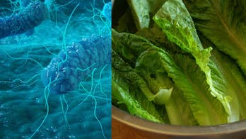 Romaine lettuce: What to know about the latest E.Coli outbreak that has spread across 11 states, what the CDC is saying about it, and why your salads could be the cause of it.