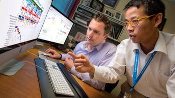 Early- and mid-career scientists face tougher odds than their more-experienced colleagues, which can be discouraging for young creative minds looking for a chance to fight cancer. Meet Paul Northcott, a 40-year-old investigator from St. Jude Children's Research Hospital who knows firsthand how early grant money can impact innovative cancer research.