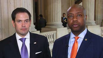 On 'America's Newsroom,' Republican lawmakers from Florida and South Carolina on how the Trump administration should handle the Iran nuclear deal.