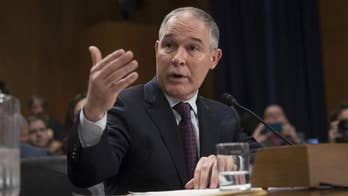 Potentially pivotal day on Capitol Hill for EPA Chief Scott Pruitt; reaction from 'Outnumbered' panel.