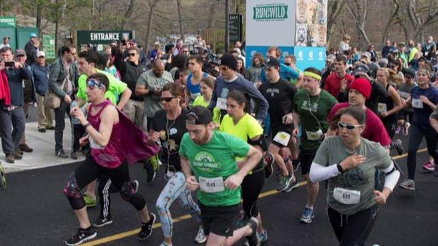 Bronx Zoo hosts 'Run for the Wild' 5K