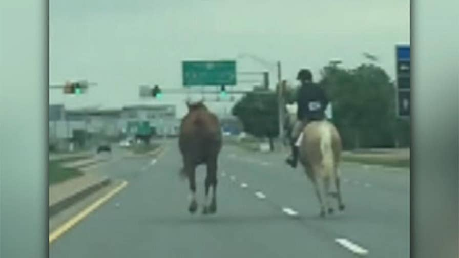 Raw video: 14-year-old girl on horseback rides to stop escaped horse running down busy highway.