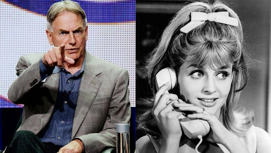 'NCIS' star Mark Harmon's rocky relationship with his sister