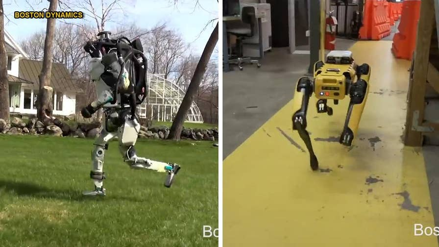 Boston Dynamics, the company known for its 'nightmare-inducing' backflipping robots, has unveiled two new videos that show them autonomously navigating through different terrains, including an office and a lab, and jogging in a grass field.