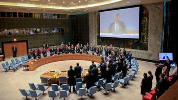 UN Security Council holds emergency meeting on Gaza protests