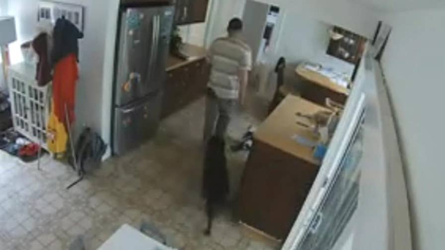 Suspect makes sure the family dog is back in the house before fleeing the scene.