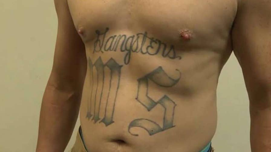 The crackdown is part of President Trump's initiative to defeat the Mara Salvatrucha, a brutally violent international gang from El Salvador; Bryan Llenas reports.