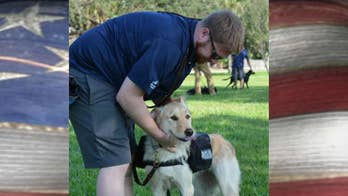 Air Force veteran on how canines help veterans combat PTSD.
